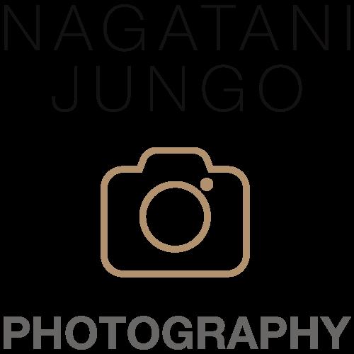 jungo-logo-21