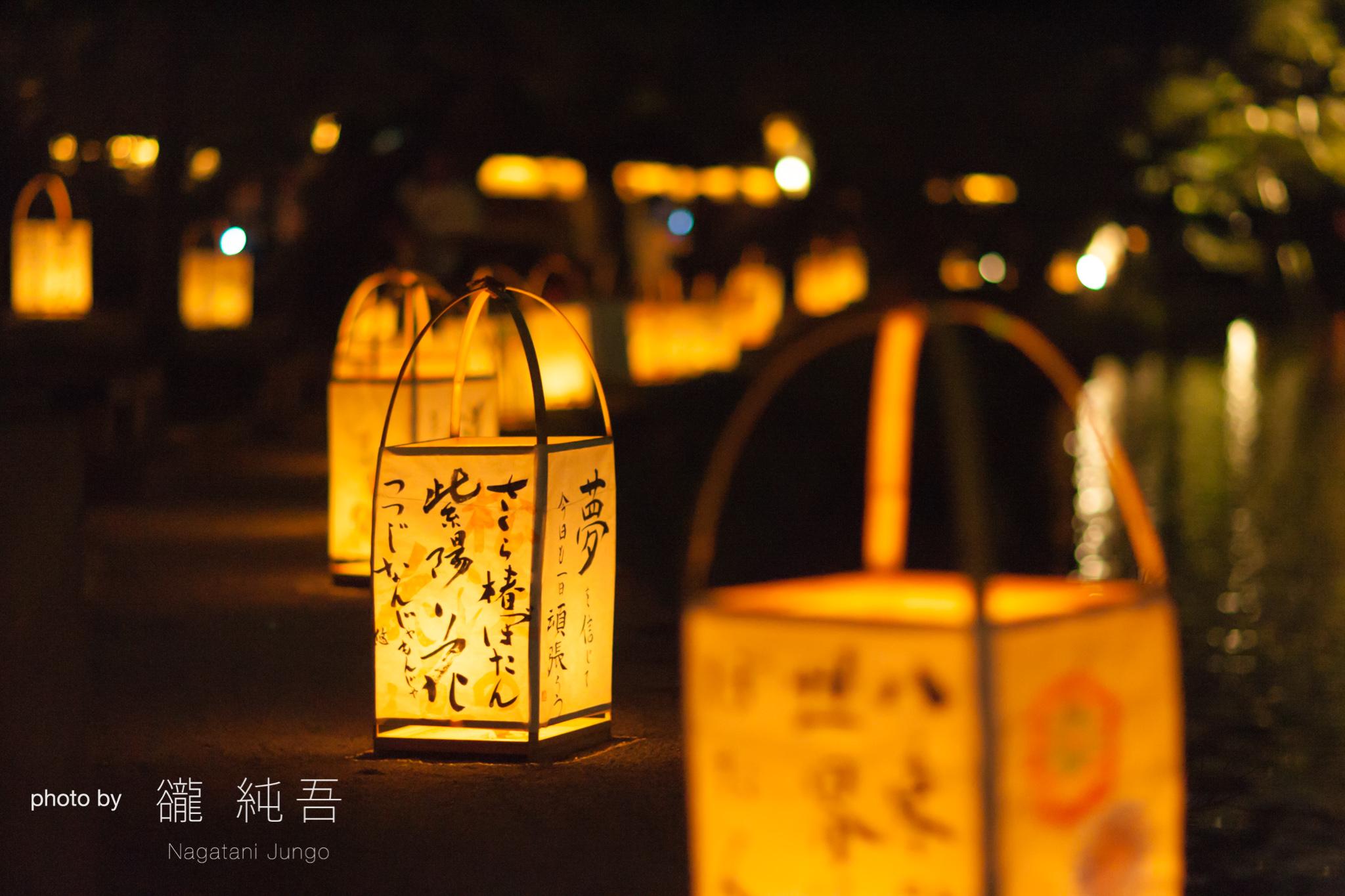堀川沿いに並ぶ行燈。松江の秋の夜を美しく彩る。